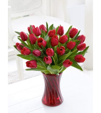 Bouquet of 24 red Tulips
