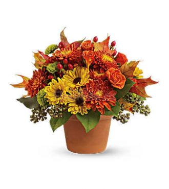 SUGAR MAPLES BOUQUET